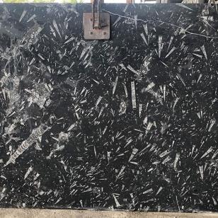 Black Fossil Marble Slab